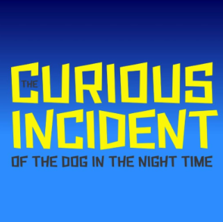 uploads/posters/curious_incident_circle.png