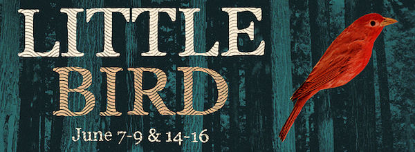 Little Bird by Heartland Theatre Collective