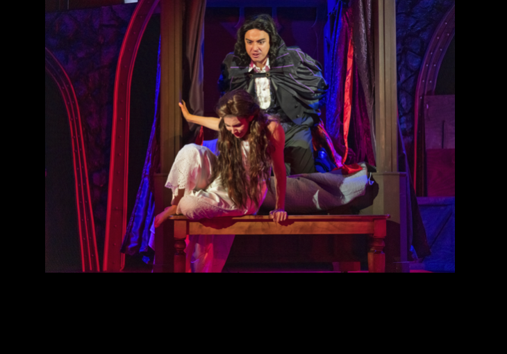 Review #2 of 2:  Dracula: Mina's Quest (adapted by Dietz) by Zach Theatre